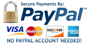 secure-payments-by-paypal (1)